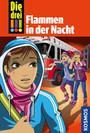 Cover von Die drei !!!, 63, Flammen in der Nacht
