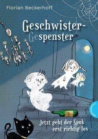Cover von Geschwistergespenster