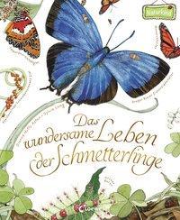 Cover von Das wundersame Leben der Schmetterlinge